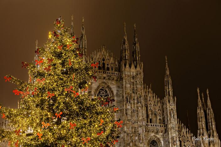 Christmas tree , cathedral façade Milan.Pablo Munini