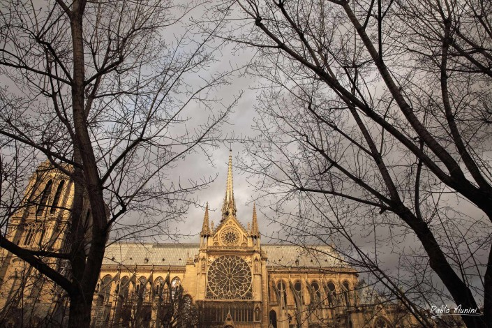 Notre-Dame de Paris, lateral view.Pablo Munini.