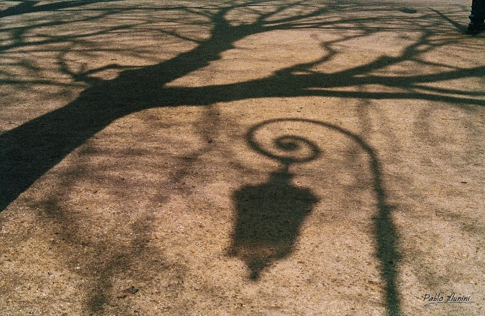 Place de Vosges, lamps and trees reflecting on the ground.Pablo Munini