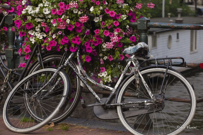 symbol of Amsterdam. bike and bridges of Amsterdam.Pablo Munini Photography