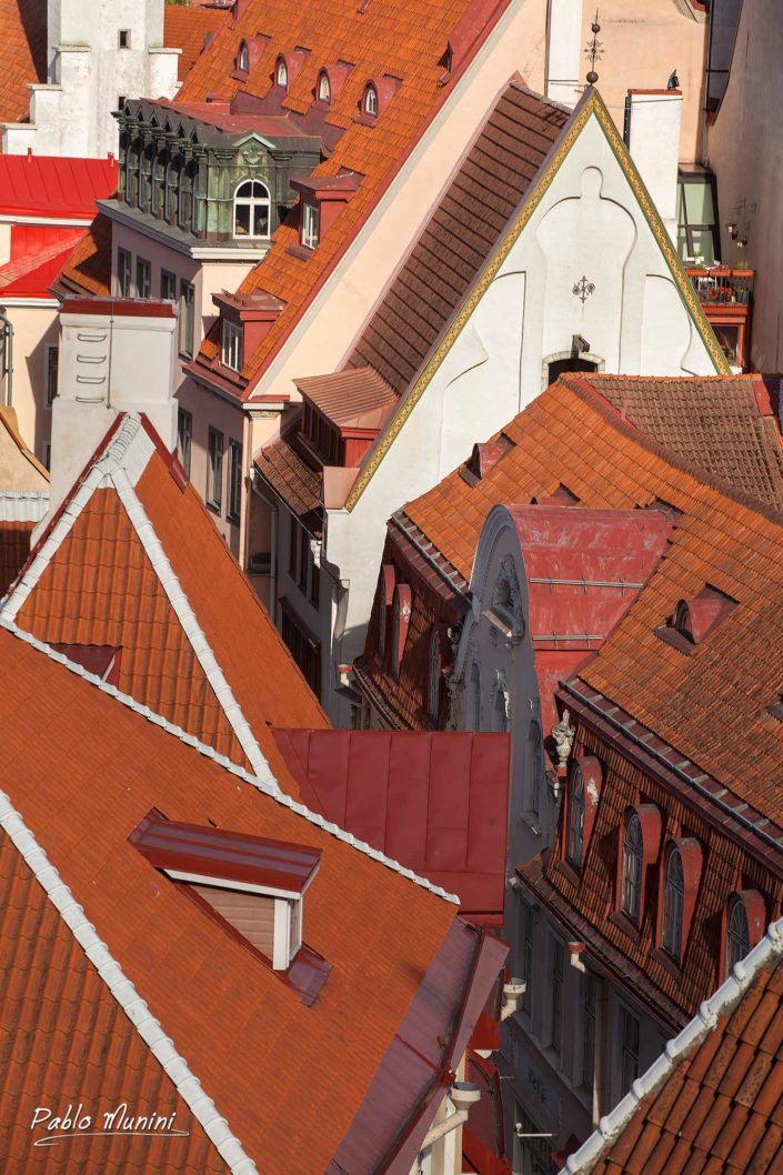 elevated view of the red tiled roofs of Tallinn.Pablo Munini