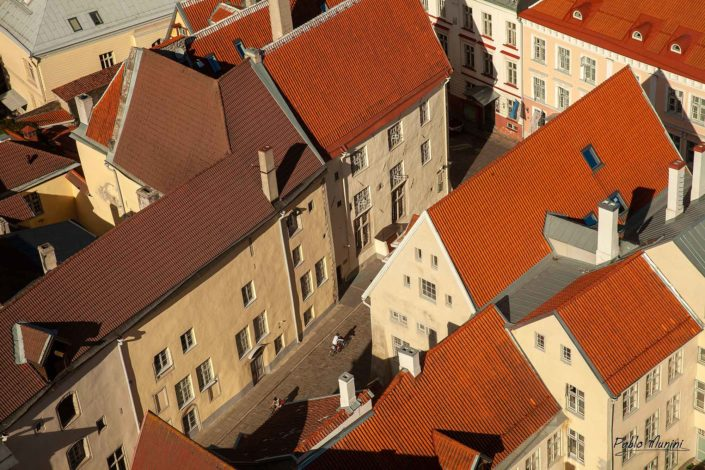 red tiled roofs and medieval houses of the old town,Tallinn.Pablo Munini