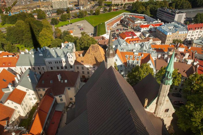 panoramic view of Tallin from the top of Tallinn's symbol ,St. Olav's church.Pablo Munini.