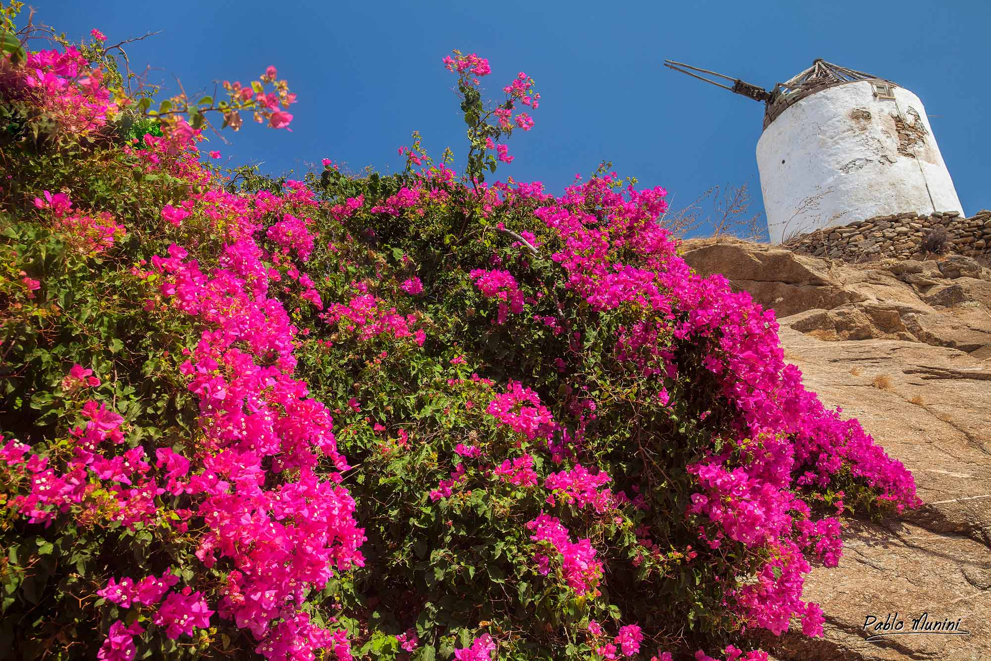 famous traditional windmill overlooking Mykonos port, island of Mykonos, Cyclades.Mykonos images.Greece cyclades islands photo gallery.cyclades images